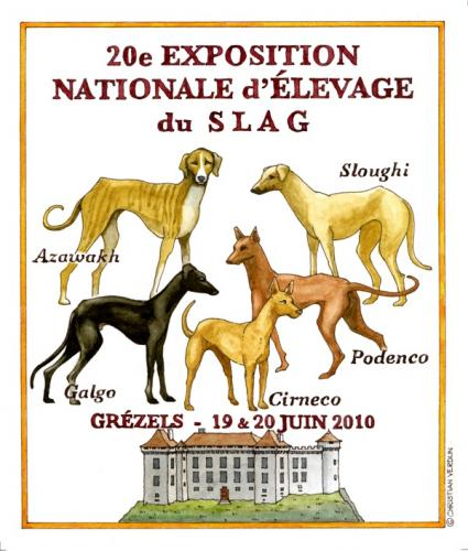 Affiche rencontre exposition canine