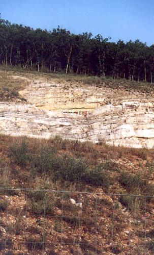 Qingcheng-Shan web